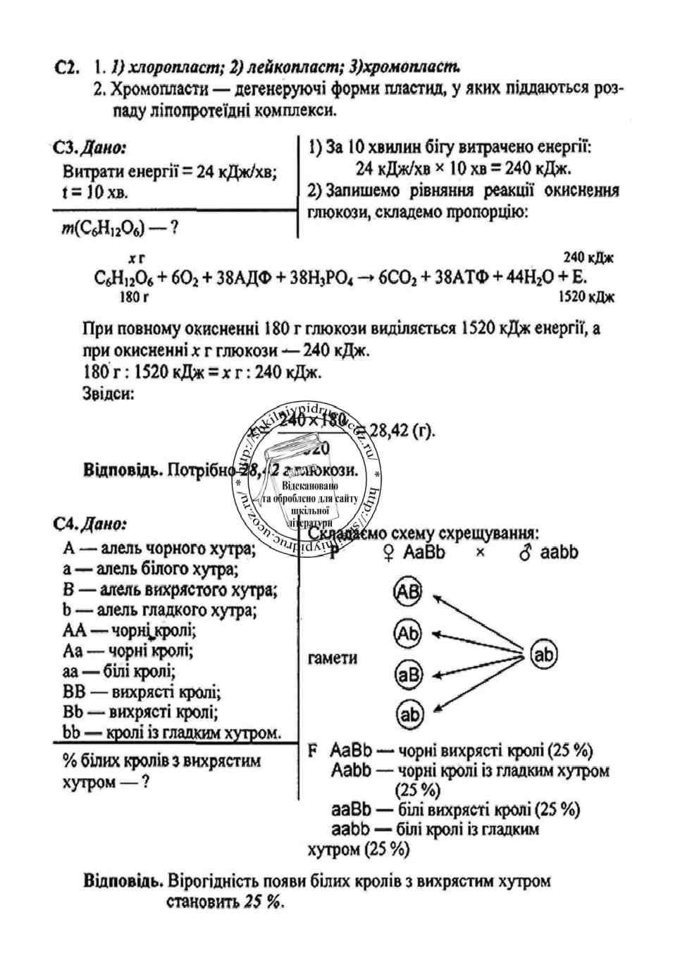 Основы программирования для